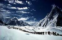 Gasherbrum K2 Trek